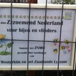zoemend nederland