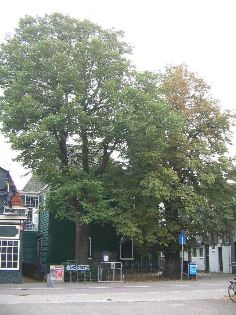 bomen vermaning krommenie