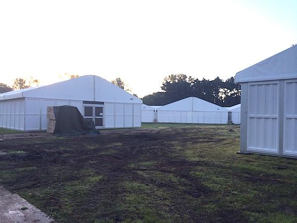 2. veldpark gras