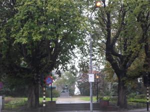 Verzetsplansoen paardenkastanjebomen 2015 (11)