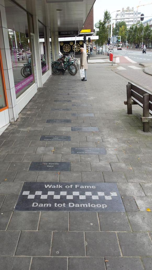 walk of fame damloop