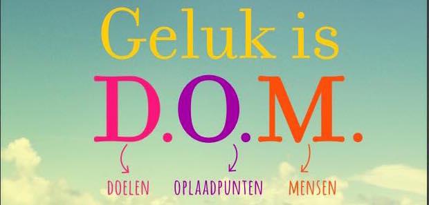 GELUK IS DOM copy 2