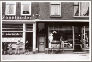 Zaanlander