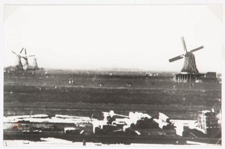 Reinout 1895