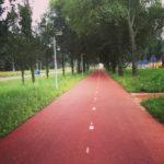 fietspad amsterdam zaandam2