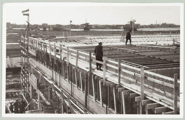 michaelcollege1966