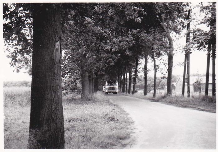 gjc-1955-bus