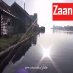 zaantube-29