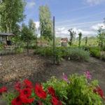 poelenburg groen oase