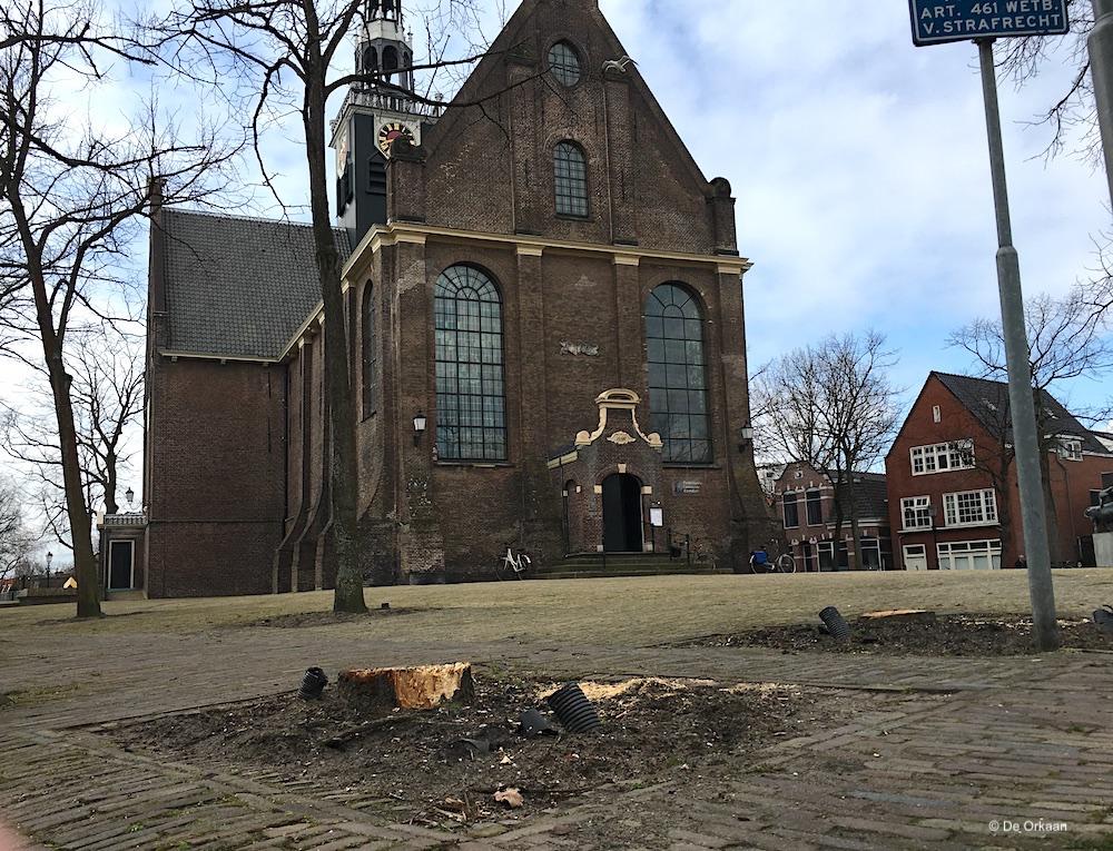 bomen bullekerk 2