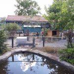 Kinderboerderij De Veldmuis September 2018