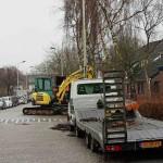 Bomenkap_He t_Kalf_©_Willem_Croese 1