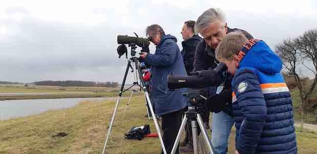 Vogelkijkdagen Landschap Noord-Holland Foto Ilse Miedema copy