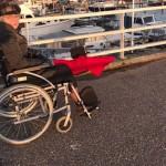 rita rolstoel