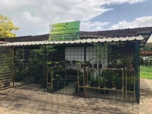 tropisch centrum zaandam