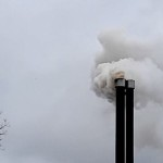 storing rook bioforte feb 2020