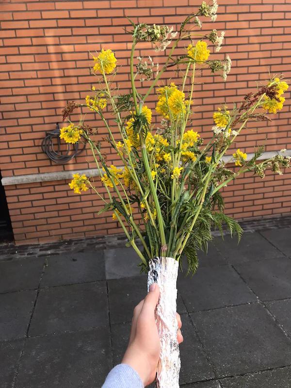 bloemen voor Hannie Schaft
