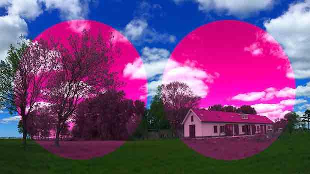 roze-bril copy