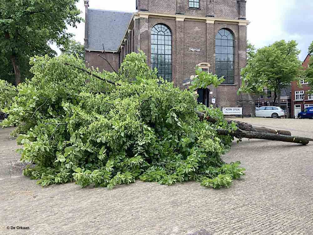 bomen westzijde bullekerk orkaan juni 2020